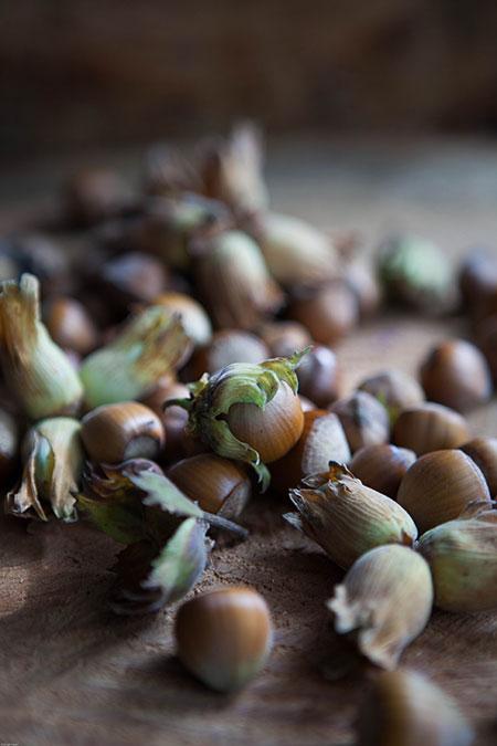 Avellanas garrapiñadas con canela (gesuikerde hazelnoten met kaneel)